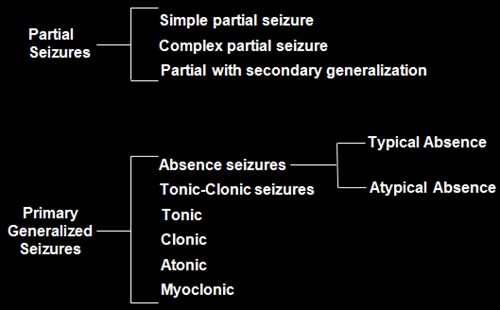 1. Epilepsy Overview-Definition-1-Classification of Epileptic Seizures