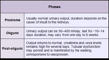 Phases of urinary output in acute tubular injury